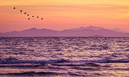 tramonto Follonica